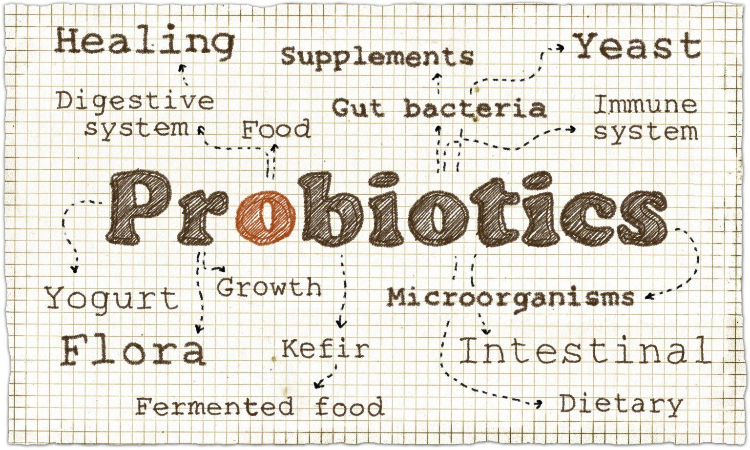 Prečo potrebujeme probiotiká